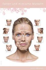 Botox Falten
